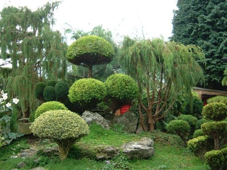 12 best zen gardens images on Pinterest Zen gardens Garden