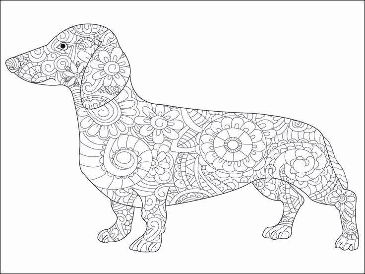 Beste Von Inspiration Hund Ausmalbild Fur Kinder Kostenlos Maleboger Tegning Dyr