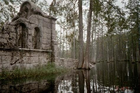 59 Best Ideas About Research Mtg Cards On Pinterest South Carolina Angkor And Water