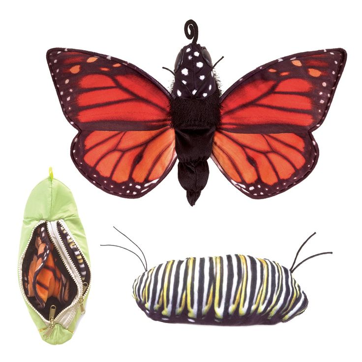 Monarch Life Cycle Reversible Butterfly Caterpillar by Folkmanis Puppets released in April 2016