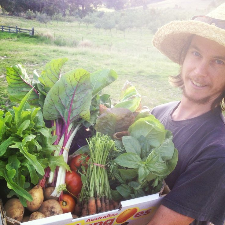 The Milkwood Permaculture blog.