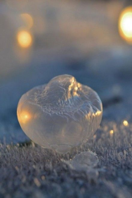 Frozen in a Bubble: Photographs of Soap Bubbles Freezing at -9 °C by Angela Kelly