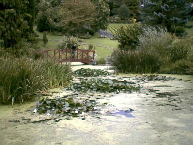 Avenham Park in Preston Lancashire, England