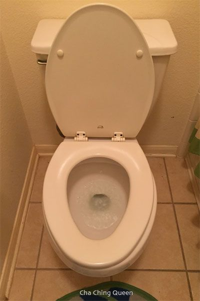 Best 25+ Cleaning toilet ring ideas on Pinterest | Clean shower ...
