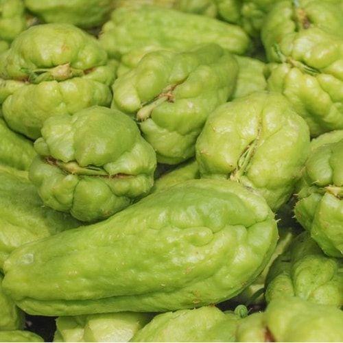Zucchine spinose (o melanzane americane): come cucinarle? Ecco le ricette: