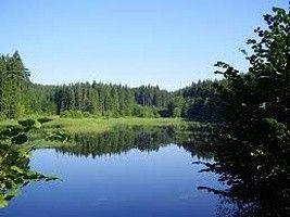 Ekosystém rybník - hry a prezentace