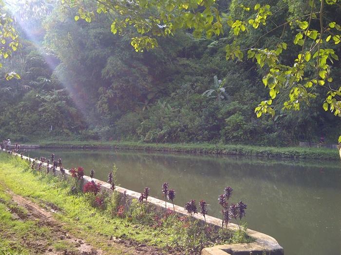 Love the sun ray! #Cirendeu #Sukabumi