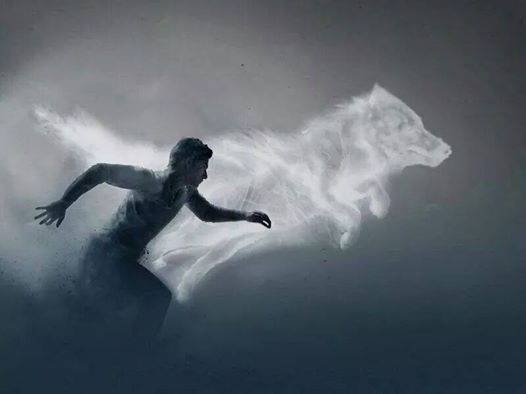 """""""He and the wolf, they were one."""" Cassel and his spirit-like wolf form running together... This pic is really amazing *.*"""