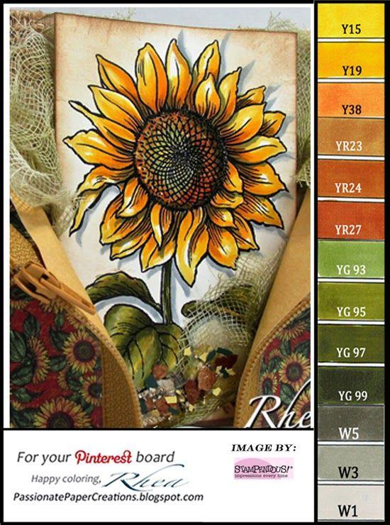 Color Palettes-215