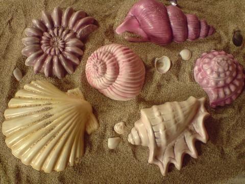 morská tematika :-) vymenené foto