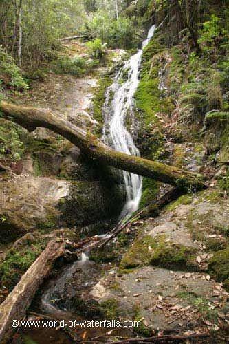 Evercreech Falls  Evercreech Forest Reserve / Fingal Valley, Tasmania, Australia