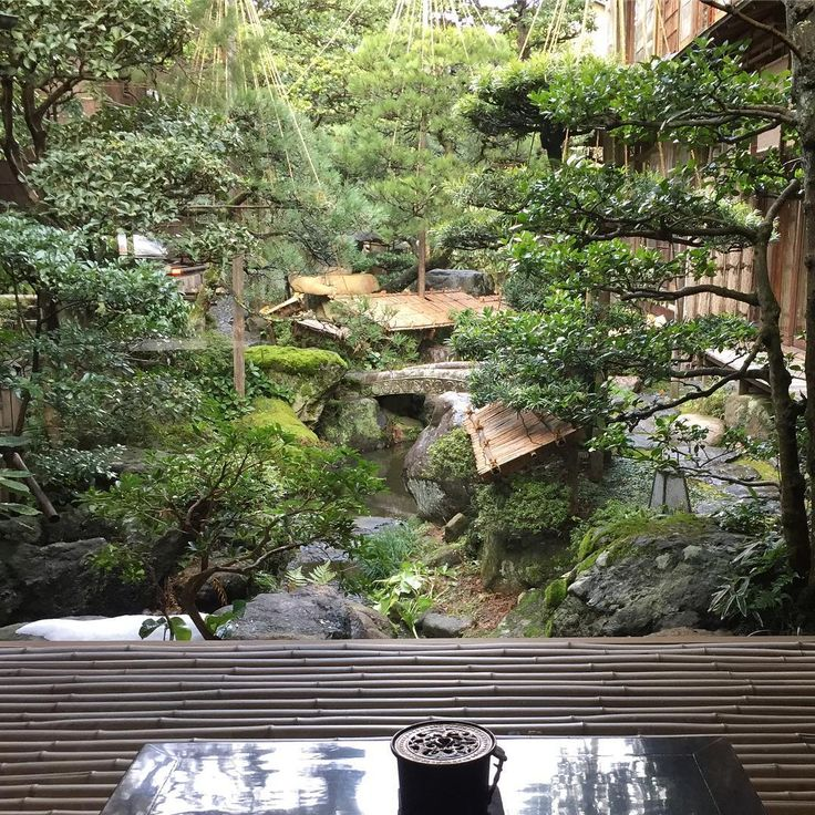 No filter needed for this #roomwithaview at the delightful #nishimurayahonkan #ryokan. Wish we could have stayed longer here but our after three weeks in Japan, our budget is starting to wobble! #excessive #onceinalifetime #Kinosakionsen #relaisetchateaux #perfectlypruned #gardengoals #robandcharliertw #traveltonics