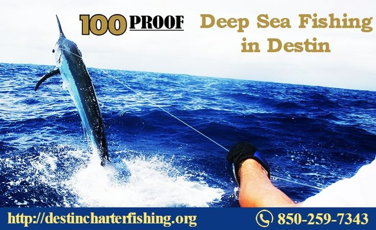 12 best fishing charters and fishing trips images on for Deep sea fishing charters destin fl