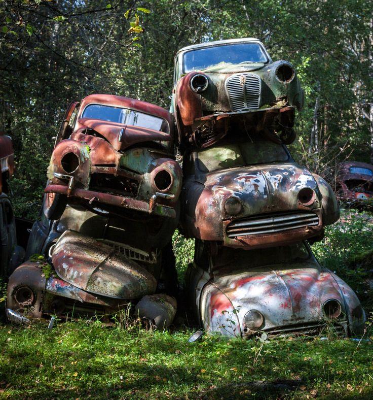 un vieux cimetiere de voitures en suede 3   Un vieux cimetière de voitures en Suède   voiture vintage Suède seconde guerre mondiale photo mo...