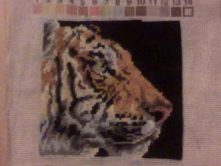 tiikeri taulu :)