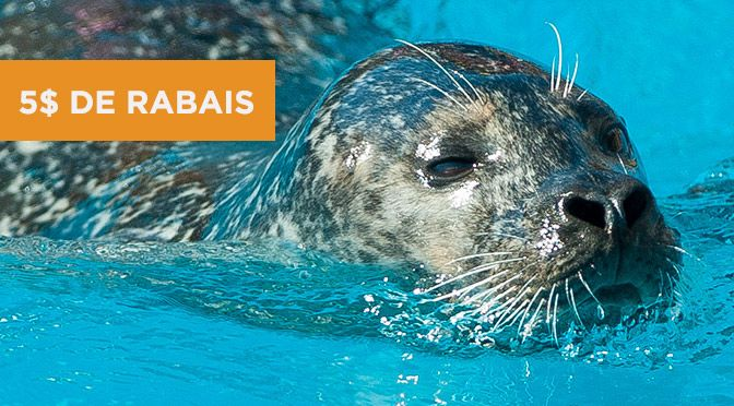 coupon rbais 2015 aquarium de quebec