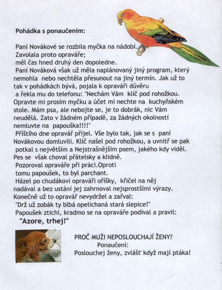 Papoušek a oprav��ř.jpg (1166×1519)