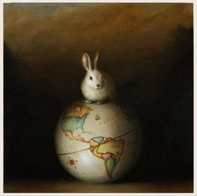 More rabbits