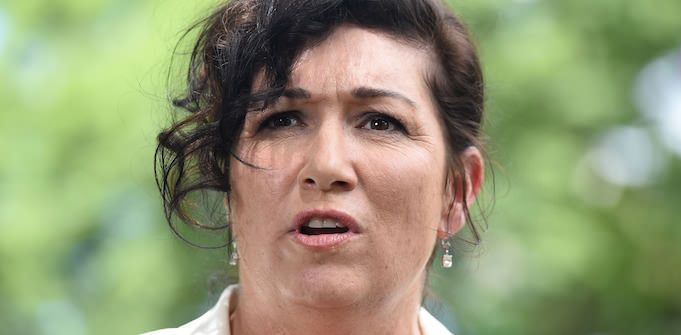 Why Queensland Small Business Minister Leeanne Enoch owes (nearly) everything to a small chicken shop