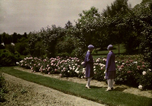 Two ladies in blue by the rose bed 1928.