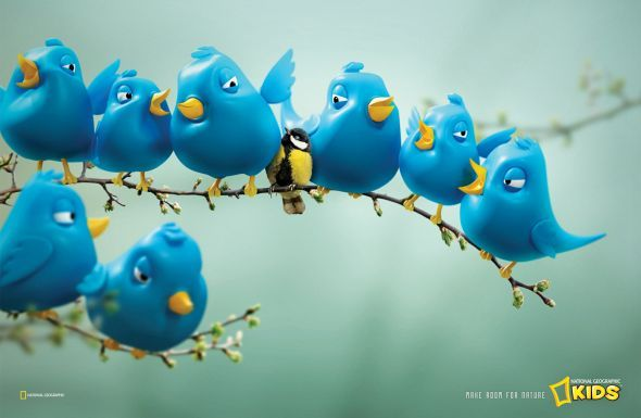 National Geographic Kids Magazine: Twitter Birds