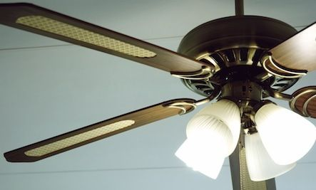 Ceiling Fans Are Not Just for Summer. Here's Why......adjust the direction from the normal summer counterclockwise one to its opposite.   Read more: http://www.care2.com/greenliving/ceiling-fans-are-not-just-for-summer-heres-why.html#ixzz3Glwpzmvy