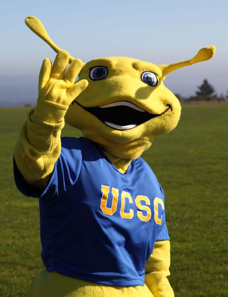 Sammy the Slug of the University of California at Santa Cruz #nbcsports