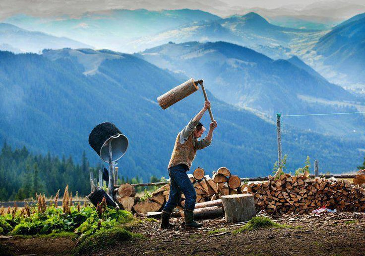 Activitati - taierea si prelucrarea lemnului.