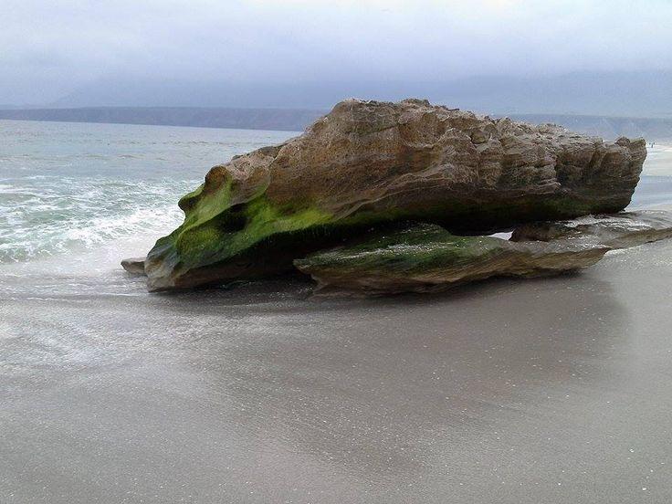 Playa Las Lozas, Region de Antofagasta, Chile.
