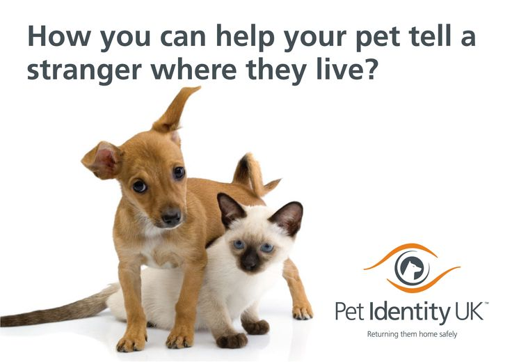 The UK's fastest growing national pet registration data