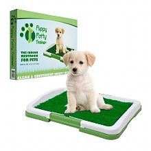 PAW Puppy Potty Trainer The Indoor Restroom for Pets at Walgreens. Get free shipping at $35 and view promotions and reviews for PAW Puppy Potty Trainer The Indoor Restroom for Pets