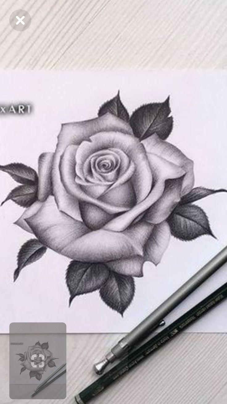 Draw Rose Draw Rose Rosetattoo Tattoo Realistic Rose Tattoo Rose Flower Tattoos Roses Drawing