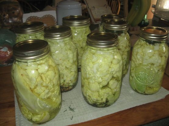 Spicy and delicious dill vegetable pickles. They are easy to make...I usually make a 5 gallon jug in the fall and give them away to my friends.  They are usually ready by Thanksgiving.  You can also use kirby cucumbers, peppers, hot or sweet, green tomatoes or any combination you like.