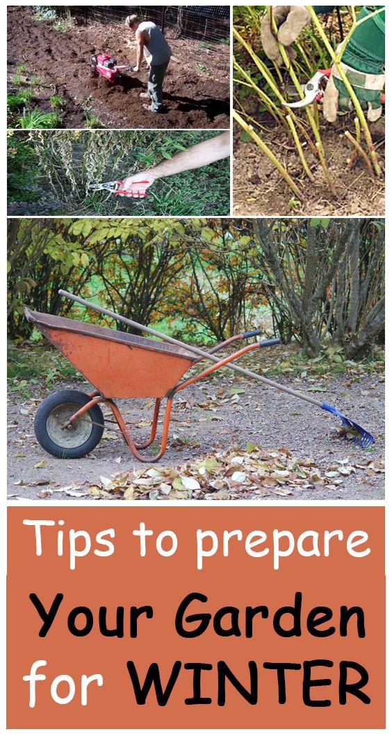 Tips To Prepare Your Garden For Winter Garden Gardening Tips Garden Tools
