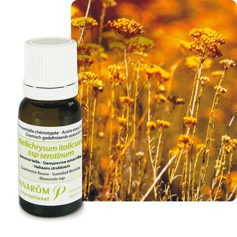 L'huile essentielle d'immortelle ou hélichryse italienne : varices, rides ou cicatrices