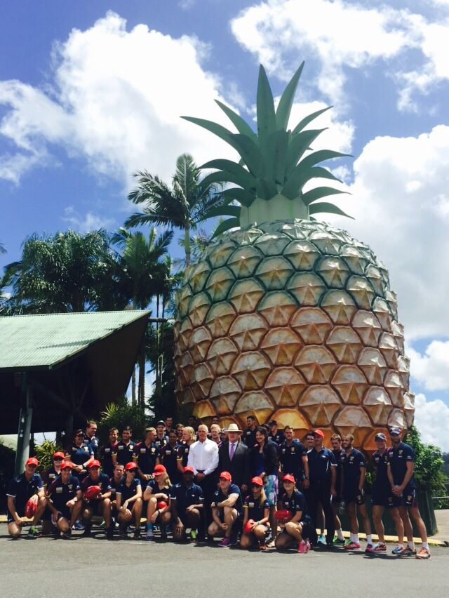 The Brisbane Lions sent two days in the Sunshine Coast as a part of the 2015 Australia Post #CommunityCamp  First stop the Big Pineapple!