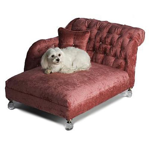 the classy dog designer dog clothes luxury dog beds dogs beds dogs