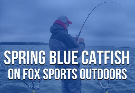 Spring Blue Catfish on Fox Sports Outdoors With Chad Ferguson. Join me on Fox Sports Outdoors for some Spring shallow water blue catfish action!