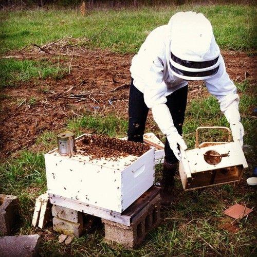Baño De Tina Con Miel:Bee Keeper