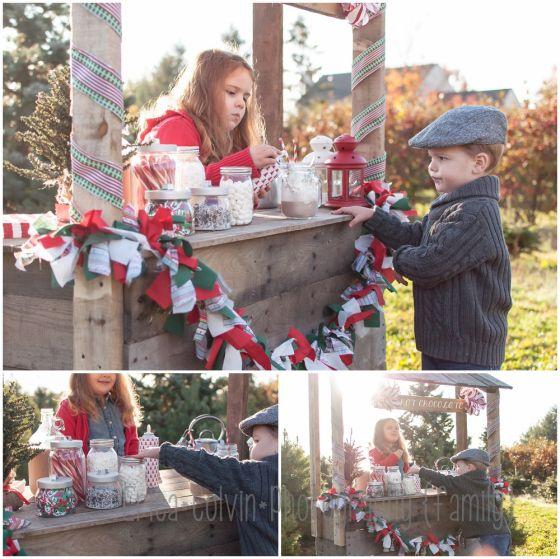 Christmas Tree Farm Madison Wi