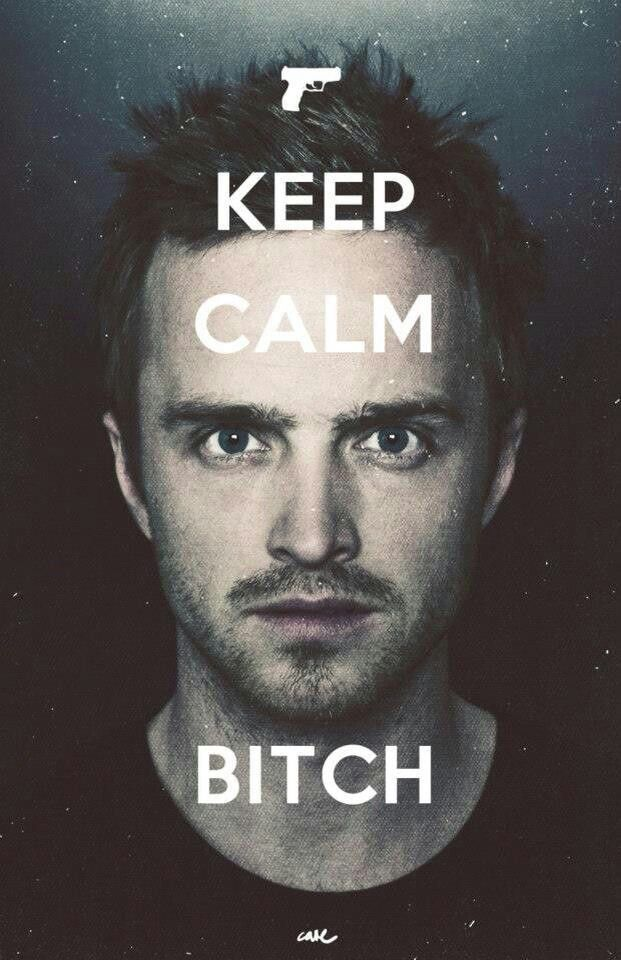 Breaking Bad fuckin lovelove jesse pinkman