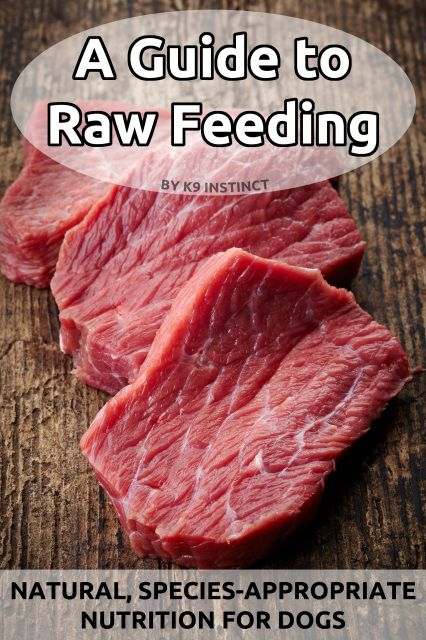 A Guide to Raw Feeding eBook - 3rd Edition - K9 Instinct - Dog Nutritionist in Kitchener, Ontario, Canada. K9 Instinct Blog! Dog Nutrition consultations online!