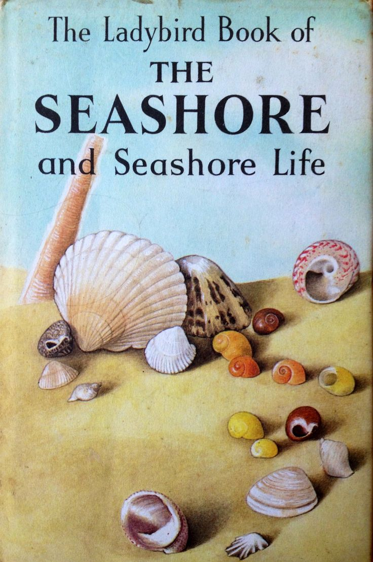 The Ladybird Book Of The Seashore And Seashore Life.