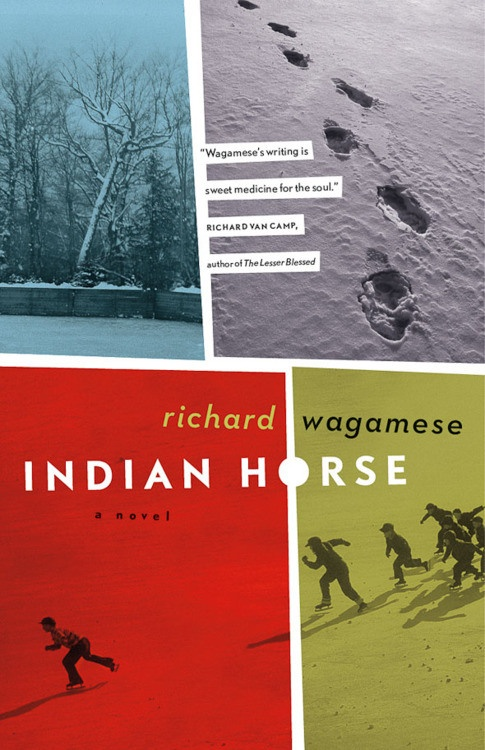 Indian Horse, by Richard Wagamese. About an Aboriginal hockey player. Was one of the CBC Canada Reads books in 2013.