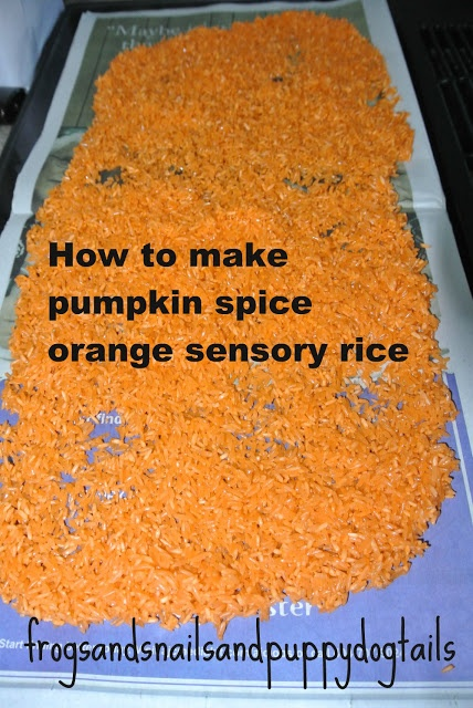 Frogs and Snails and Puppy Dog Tails (FSPDT): How to make pumpkin spice & orange colored sensory rice