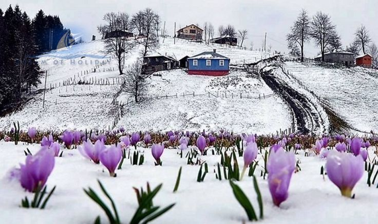 türkei-Trabzon