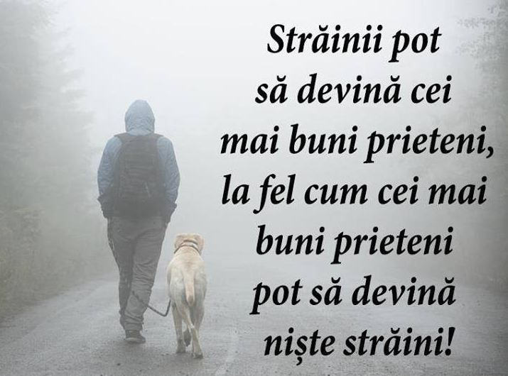 Best Friendship Quote: Strainii Pot Sa Devina Cei Mai Buni Prieteni  - Strainii pot sa devina cei mai buni prieteni, la fel cum cei mai buni prieteni pot sa devina niste straini! Strangers can become best friends, as best friends can become strangers! #bestfriends #friendship #friendshipquotes