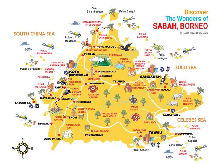 Borneo, 2nd: Tread Your Own Path (Footprint - Travel ...