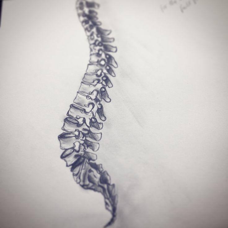 studio 6. Fashion Design (Honours) RMIT University. led pencil sketch, bones, spine structure.