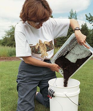 Brewing Compost Tea  Tap your compost pile to make a potion that both fertilizes and prevents disease